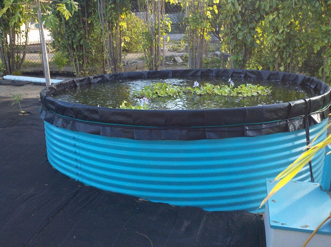 Aquaculture And Aquaponics Eco Products Maui